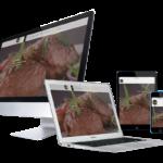 portfolio responsive design karin de wit design